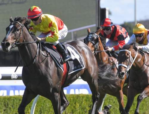 Stakes Potential for Invincible Filly