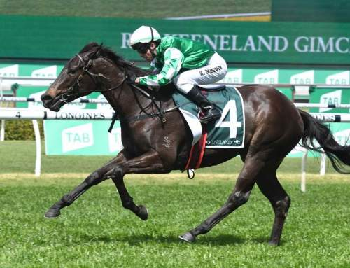 Invincible Filly Wins Blue Diamond Preview
