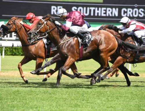 Another Millionaire for I Am Invincible and a Slipper Contender