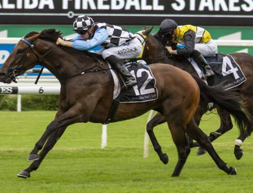 Record Breaker for I Am Invincible