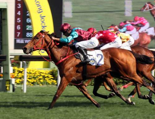 Third Group One Winner for Hinchinbrook