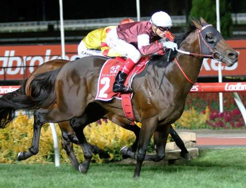 Invincible Stallion Wins Group One