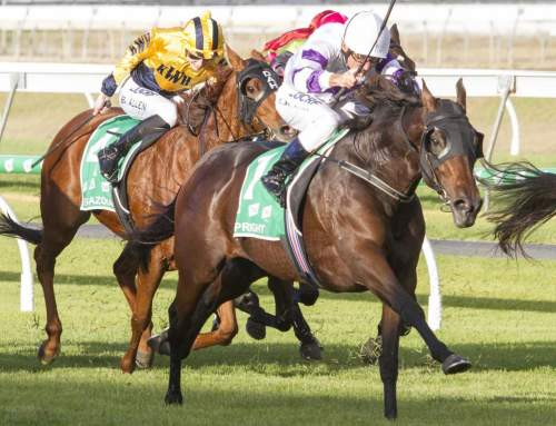 Fourth G1 Winner for Hinchinbrook
