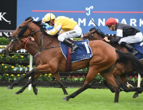 Stakes Double for I Am invincible