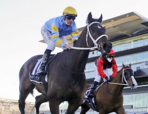 Winners Keep Coming for I Am Invincible