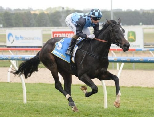 New Stakes-Winner for I Am Invincible