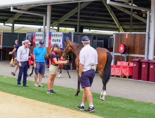 Yarraman Leading Classic Vendor by Aggregate