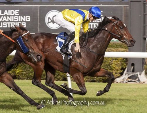 Deserved Stakes Success for Muntaseera
