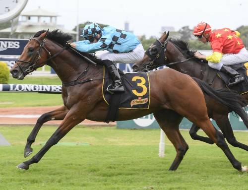 G3 Victory for Invincible Colt