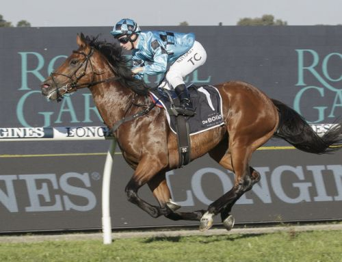 Caulfield Guineas Goal for Invincible Colt
