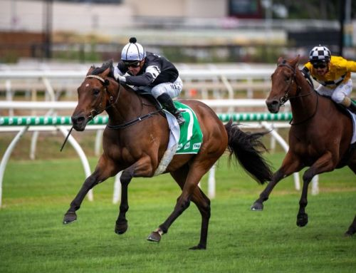 I Am Invincible Sprinter Stakes Stradbroke Claim