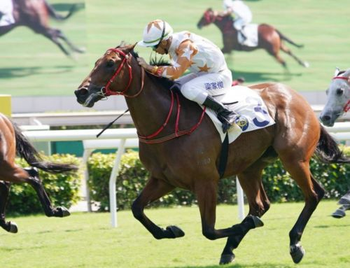 First Hong Kong Stakes-winner For I Am Invincible