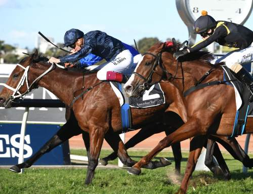 Eckstein Wins Winter Stakes for Coolmore