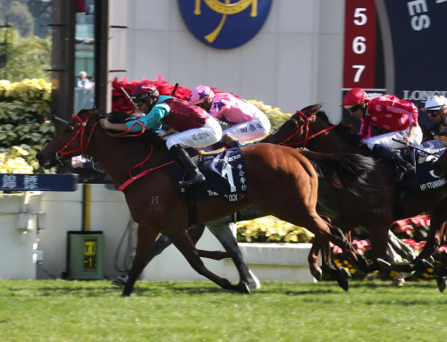 Hinchinbrook Sprinter Wins G1 HK International